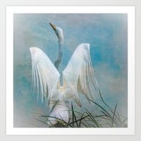 Egret Preparing To Launc… Art Print