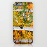 Birch Trees and Autumn Colors iPhone 6 Slim Case