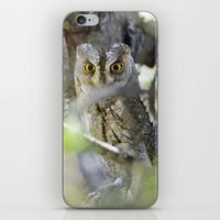 Small Scops Owl. Misteri… iPhone & iPod Skin