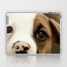 Boxer Nose Laptop & iPad Skin