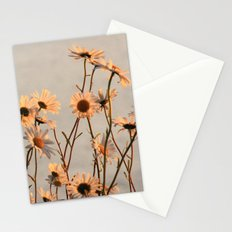 Daisies of the river bank Stationery Cards