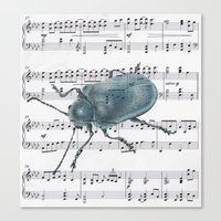 Music Beetle Canvas Print