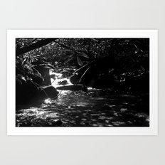 Shadow of The Mountain Art Print
