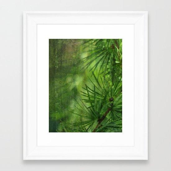 Mélèze Framed Art Print