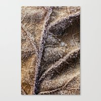 Frost Crystals On A Leaf Canvas Print