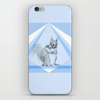 Squirrel Stealing Nuts iPhone & iPod Skin