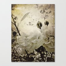 the cutting garden Canvas Print
