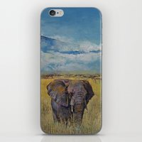 Elephant Savanna iPhone & iPod Skin