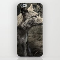 Tom Feiler Wolf iPhone & iPod Skin
