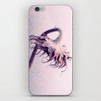 girasole iPhone & iPod Skin