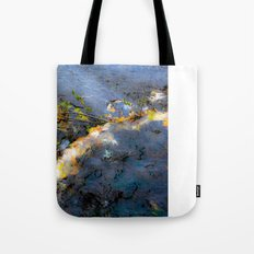 Changing Tides Tote Bag