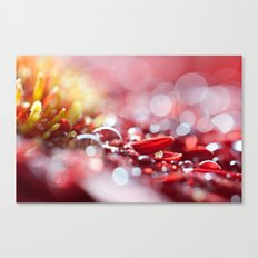 Red For Today Canvas Print