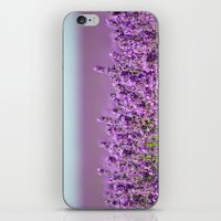 Snowshill Lavender iPhone & iPod Skin