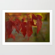 Art Print featuring Autumn by Dorothy Pinder