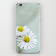 Pixie Daisies  iPhone & iPod Skin
