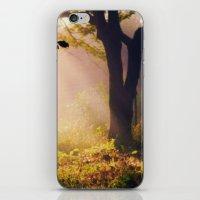 Golden Morning iPhone & iPod Skin