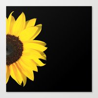 Colored Summer ~ Sunflow… Canvas Print