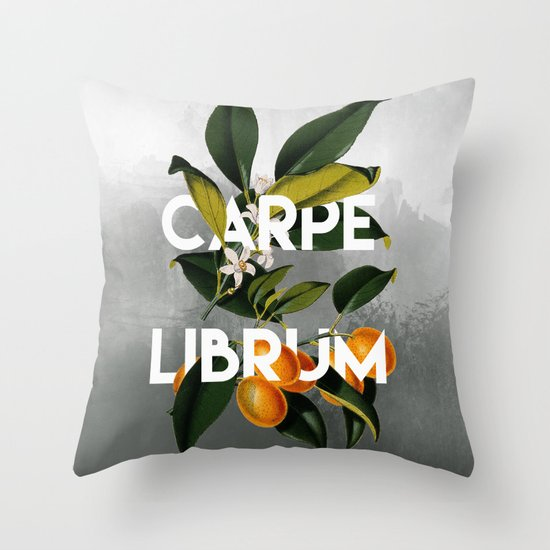 Carpe Librum | Bookish Throw Pillows