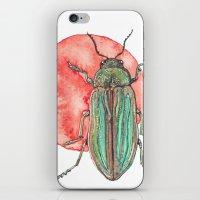 Iridescent Beetle iPhone & iPod Skin