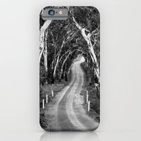 iPhone & iPod Case featuring Winding Road - Barossa Valley, South Australia by Theresa Avery