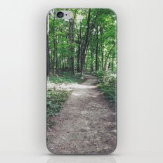 trails iPhone & iPod Skin