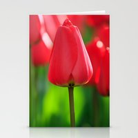 Red Tulip Stationery Cards
