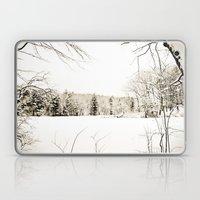 On Thin Ice Laptop & iPad Skin