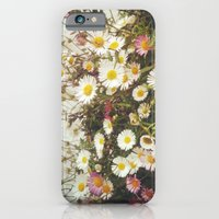 iPhone & iPod Case featuring Wall of Daisies by Cassia Beck