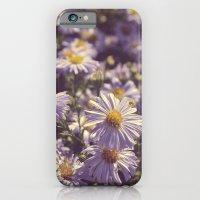 Summer End iPhone 6 Slim Case