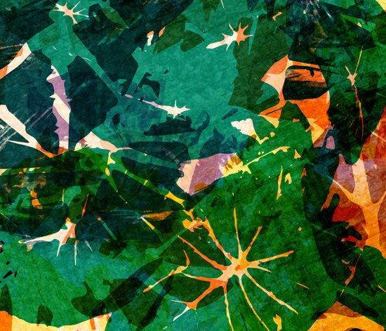 Calladium Remix I Art Print
