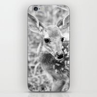 In The Tall Summer Grass iPhone & iPod Skin