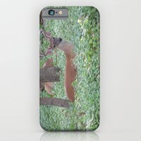 Here's Looking at You! iPhone 6 Slim Case