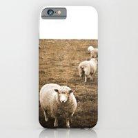 Sheep in a field iPhone 6 Slim Case