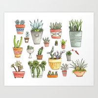 Potted Succulents Art Print