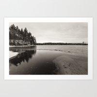 Winter On Moss Lake Art Print