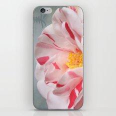 Peace Camellia iPhone & iPod Skin