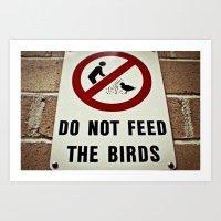 Don't feed the birds Art Print