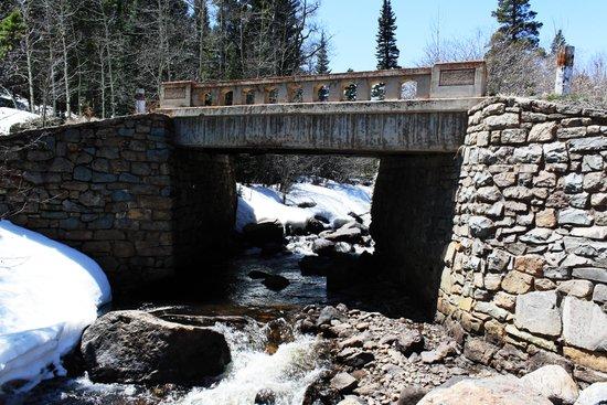 Trail Bridge Art Print