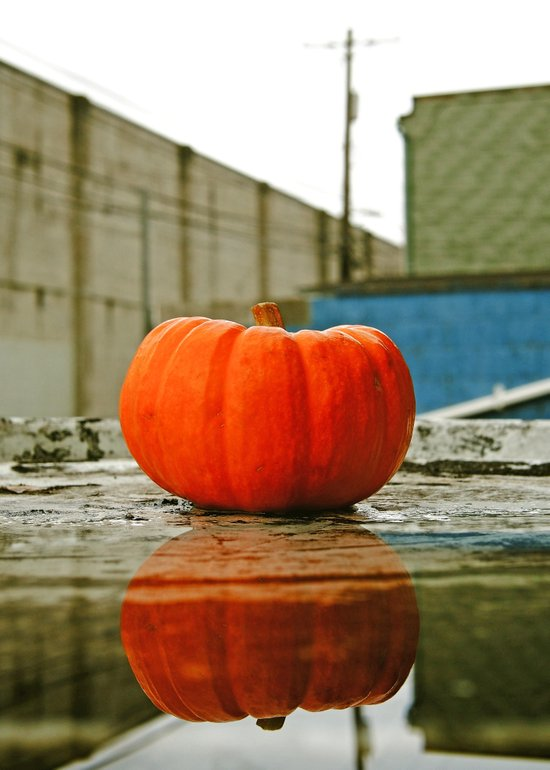 Urban pumpkin reflection Canvas Print
