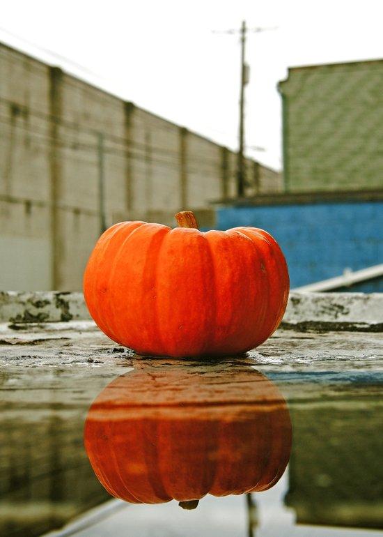 Urban pumpkin reflection Art Print