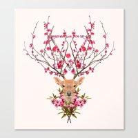 Spring Deer Canvas Print