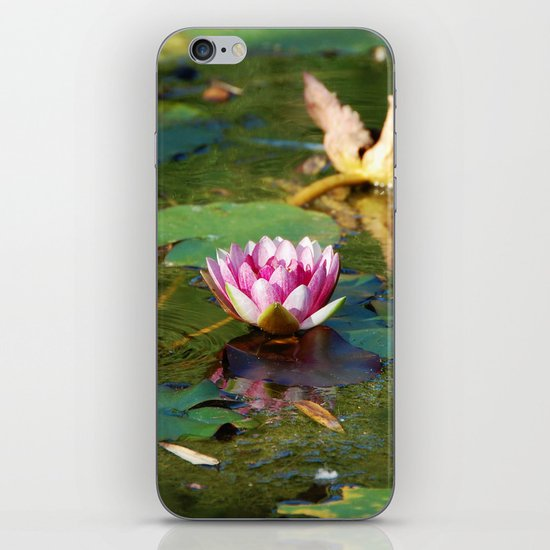 Water Lily 3 iPhone & iPod Skin