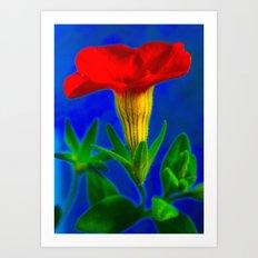 orange & blue Art Print