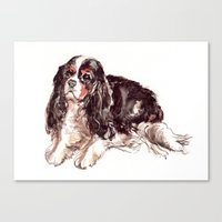 Canvas Print featuring Sweet Spaniel by Becca Kallem