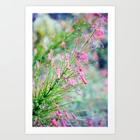 In the Throes of Spring Art Print