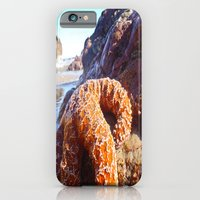 Sun Bathing iPhone 6 Slim Case