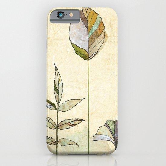 Leaf Study iPhone & iPod Case