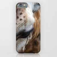 iPhone & iPod Case featuring Giraffe by Emele Photography