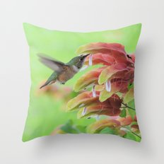 Hummingbird In Justicia Throw Pillow