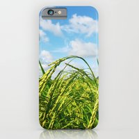 iPhone & iPod Case featuring Ripe Rice by Pan Kelvin